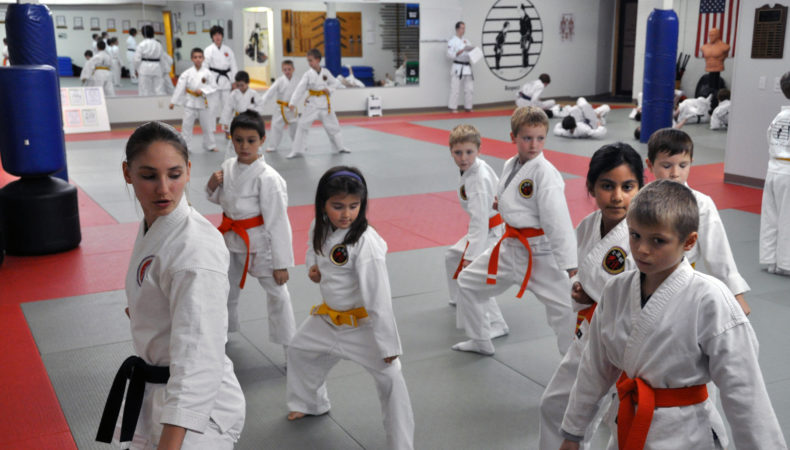 Dojo Karate Classes