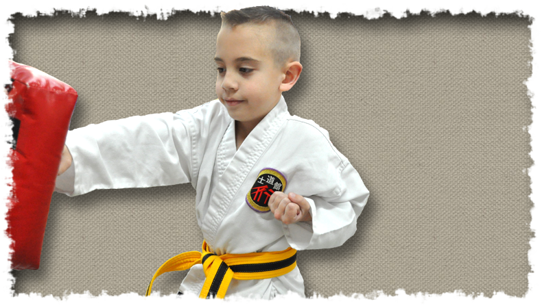Kids Karate - Shidoshi