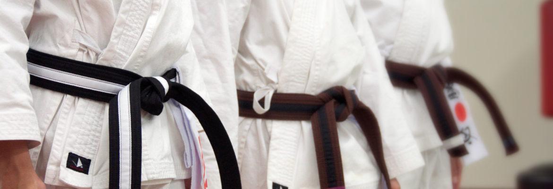 Karate Obi (Belt)