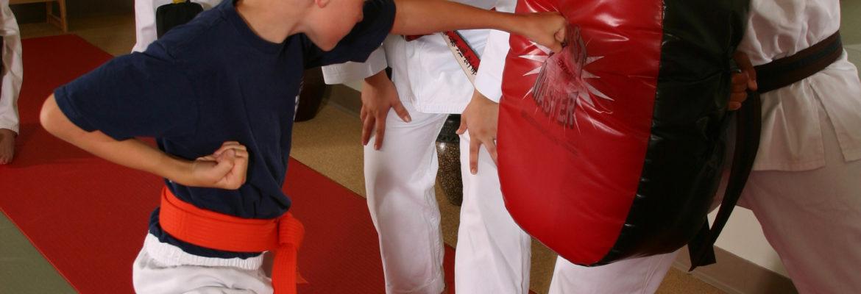 Shidoshi Teaching Punch