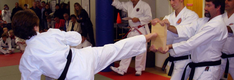 Side Kick Board Break