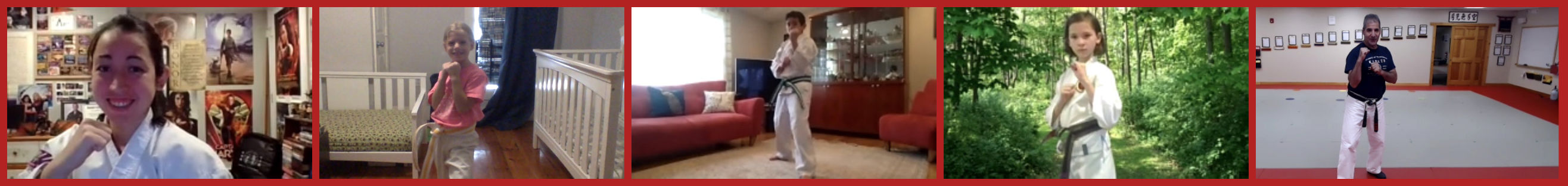 Online Virtual Karate Classes - Virtual Trial